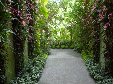 花の回廊.jpg