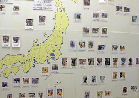 ichihara_panel.jpg