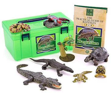 s-Reptile image.jpg
